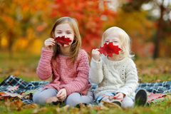 Two sisters having fun together in autumn park Royalty Free Stock Photos