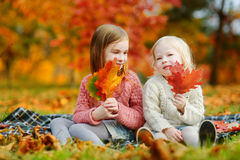 Two sisters having fun together in autumn park Royalty Free Stock Photo