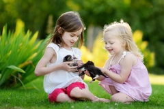 Two cute sisters playing with little kittens Stock Images