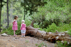 Two sisters having a walk in the woods Stock Images