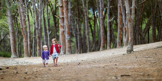 Two sisters having a walk in the woods Royalty Free Stock Image