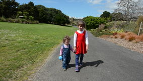 Two sisters holding hands. And walking together in the park stock footage