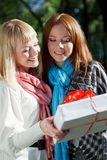 Two sisters looking to gift in the park Stock Image