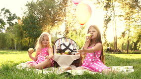 Two sisters at picnic blow bubbles. Two little cute sister at a picnic. Girls sit on a blanket and blow bubbles. Outdoor Activities. Balloons tied to a picnic stock video footage