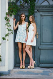 Two  sisters posing outdoor Royalty Free Stock Image