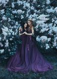 Two sisters-princesses in luxurious purple dresses with long trains, hug against the background of blooming lilacs. On wavy, curly. Hair is flower wreaths stock image