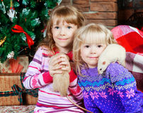Two sisters with rats Stock Photos