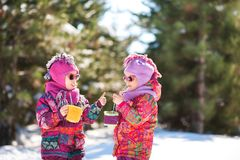 Two sisters twins in bright pink jackets in the winter against the background of snow-covered trees. Girls drink hot cocoa with ma stock photography