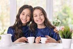 Two sisters twins drinking tea Royalty Free Stock Photo
