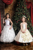 Two sisters in white evening dresses Royalty Free Stock Image