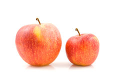 Two sizes of apples Royalty Free Stock Photo