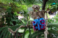 Two skeletons with gifts on hand under the tree Royalty Free Stock Image
