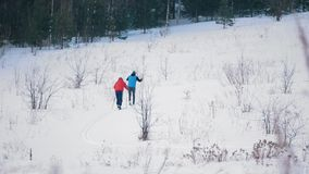 Two skiers training ski run in the snowy forest. Telephoto shot stock footage