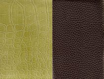 Two skins. Who make one texture Stock Illustration