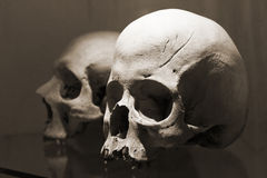 Two skulls. Skulls in Kutna Hora ossuary, Czech Republic Royalty Free Stock Photography