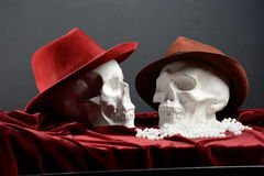 Two skulls. On a photo shoot Royalty Free Stock Photo