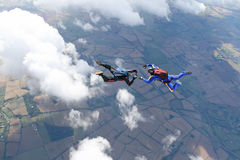 Two skydivers in freefall. On a sunny day Royalty Free Stock Photos