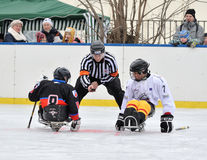 Two sledge hockey players and referee Stock Photography