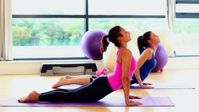 Two slender attractive women practising yoga stock video footage