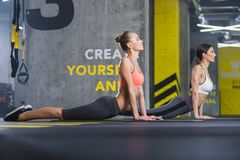 Calm slim women are warming-up in gym royalty free stock image