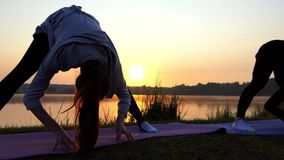 Two Young Women Practice Yoga on The Wonderful Lake Bank at Sunset in Slo-Mo. Two Slender Young Women Bend Forward, Touch Land With Hands, Raise Their Heads on a stock video