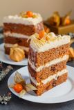 Two slices of homemade carrot cake with nuts, pears and cream-cheese Royalty Free Stock Images