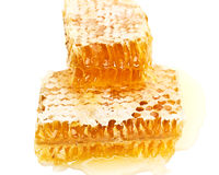 Two slices of honeycomb Royalty Free Stock Photo