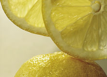 Two slices of lemon fruit on the lemon peel at vertical close up.  Stock Image