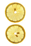 Two slices of lemon Royalty Free Stock Photography