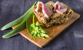 Two slices of smoked meat on bread with fresh herbs, selective focus Royalty Free Stock Image