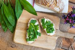 Two slices of sourdough bread with butter and wild garlic. Leaves Stock Photography