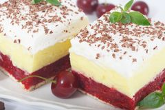 Two slices of Sweet homemade cherry cake with layers of vanilla and whipping cream. Closeup of two slices of Sweet homemade cherry cake with layers of vanilla stock images