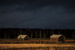 Two sloping hay stacks Stock Images