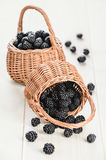 Two small baskets with ripe blackberry Stock Images