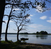 Two small boats and a dark trees by the lake at Polish Masuria district (Mazury). Two small boats and a black dead trees by lake on Masuria district in Poland stock photo