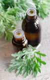 Two small bottles of essential wormwood oil Royalty Free Stock Image