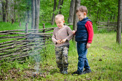 Two small boys lighting a fire in woodland Royalty Free Stock Photography