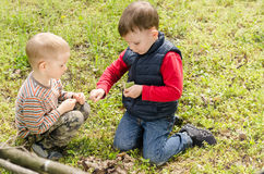 Two small boys lighting a fire in woodland Stock Images