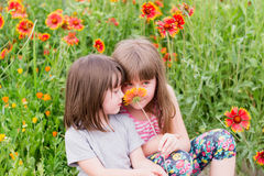 Two small children with flowers Stock Photography