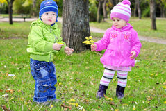 Two small children sit on a green clearing. With yellow leaves Royalty Free Stock Photo