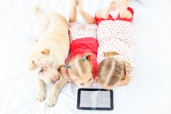 Two small children watch cartoons on the tablet. Sharpei`s dog T. He concept of childhood, lifestyle, game stock photos