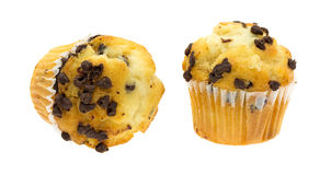Two small chocolate chip muffins Stock Photography