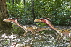 Two small dinosaurs. Close-up of two small dinosaurs running in the forest stock photography