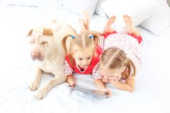 Two small kids watch cartoons on the tablet. Dog. The concept of. Childhood, lifestyle, game stock photography