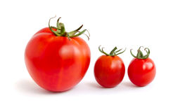 Two small and one big tomatoes. Three tomatoes. Two small an on a white background stock image