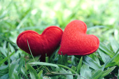 Two small red hearts in a grass meadow Royalty Free Stock Image