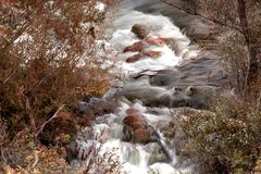 Two river streams in autumn colors. Two small river streams with blurred flow  and trees in season specific color. Cetina river, Croatia Royalty Free Stock Images