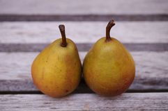 Two small Seckel pears in a row Stock Images