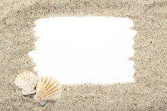 Two small shells on sand from sea with white place for text Stock Photos