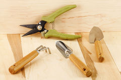 Tools to care for houseplants Stock Image